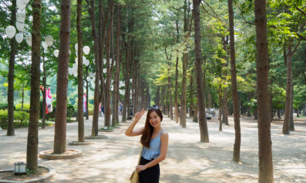 Seoul Korea Travel Guide: 5-Day Itinerary
