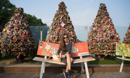 Korea: Seoul City Tour + What To Do